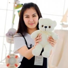 Teddybär 25 cm