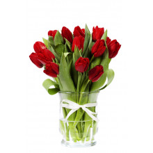 15 red tulips in a vase