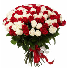 75 red and white roses