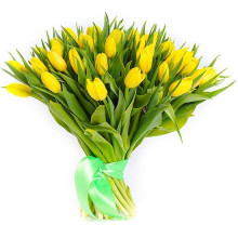 35 yellow tulips